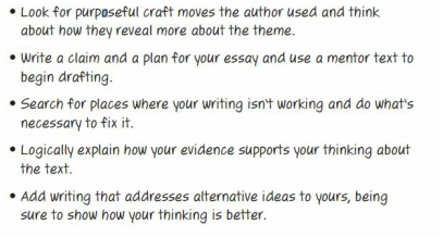 8th grade essay examples